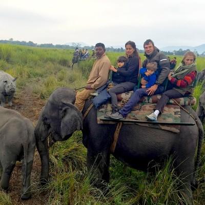 elephant ride india